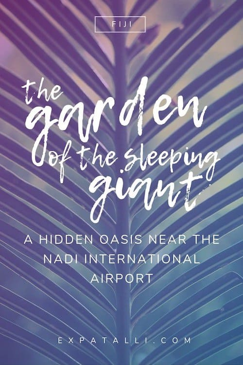 "Pinterest image of a palm frond with text: ""the Garden of the Sleeping Giant, a hidden oasis near the Nadi airport"""