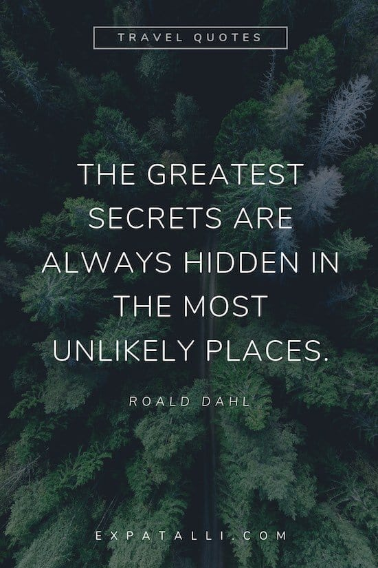 Pinterest image of a forest from above with Roald Dahl quote   Best Travel Quotes from Literature   ExpatAlli.com
