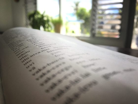 Close-up image of a Fijian phrasebook