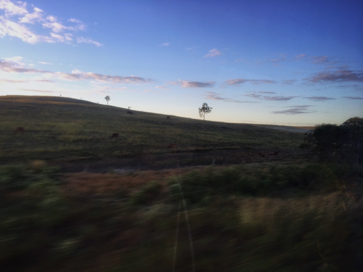 View out the window during an East Coast Australia trip with Greyhound's Whimit pass | Image © ExpatAlli.com