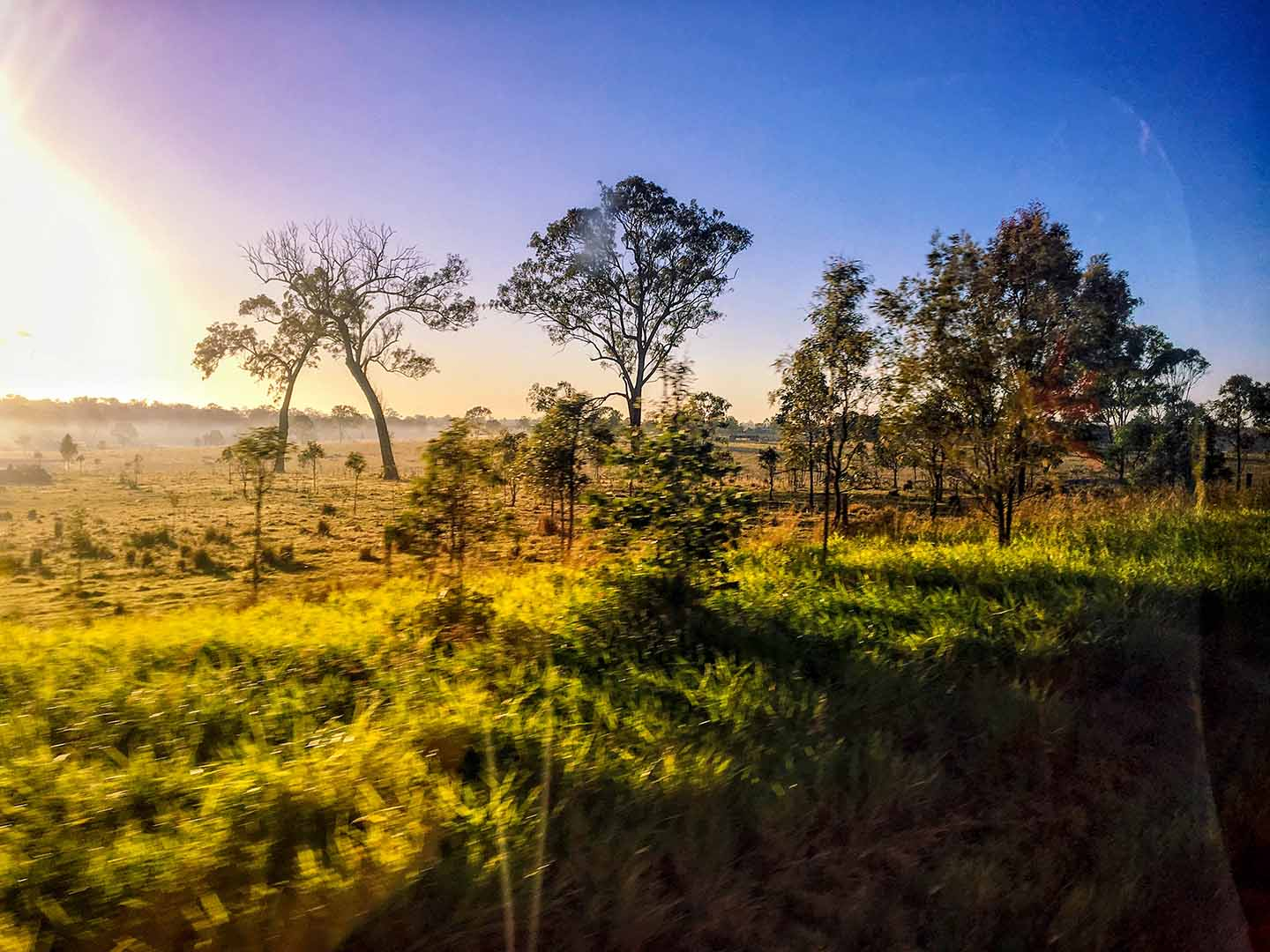 View of East Coast Australia's scenery from the bus | Image © ExpatAlli.com