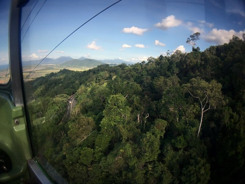 View of rainforest and road from the Skyrail cable car | Image © ExpatAlli.com